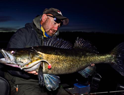Nocne łowienie w toni  – na gumę!